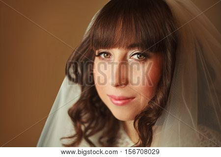 Bride With Veil Smiling