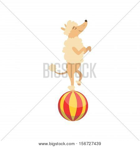 Circus Trained Poodle Dog Animal Artist Performing Balancing On The Ball Stunt For The Circus Show. Colorful Cartoon Illustration From The Collection Of Entertainment Performers And Circus Arena Vector Drawings