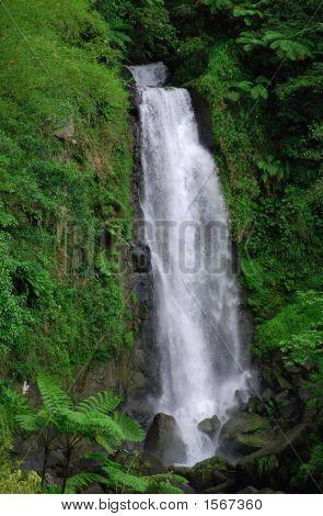Waterfalls Of Dominica
