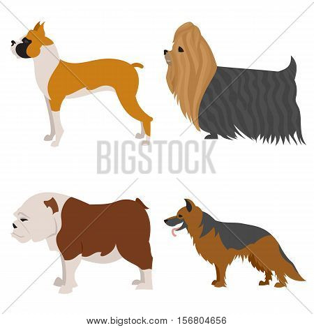 Dogs flat set, boxer and german shepherd, doggy and hound, vector illustration