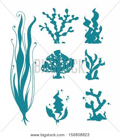 Underwater sea corals and algae vector silhouettes isolated on white. Ocean coral and reef, seaweed undersea. illustration of corals organism