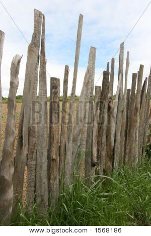 Crazy Wooden Fence