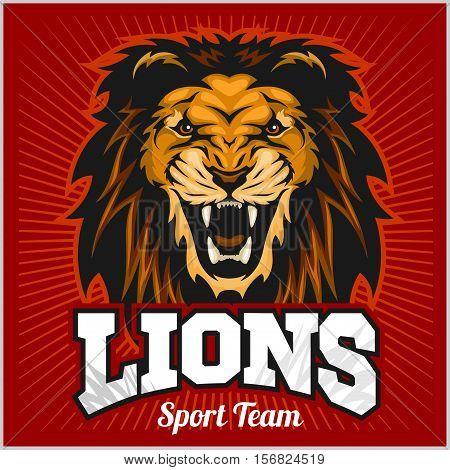 Lions - sport team logo template. Lion head on the shield. T-shirt graphic, badge, emblem, sticker. Vector illustration.