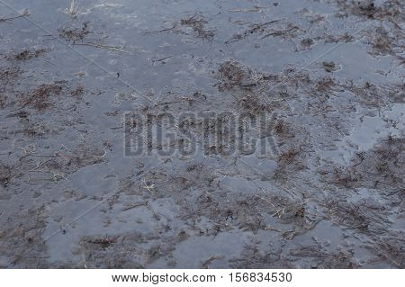 Dirty and wet black soil after rain.