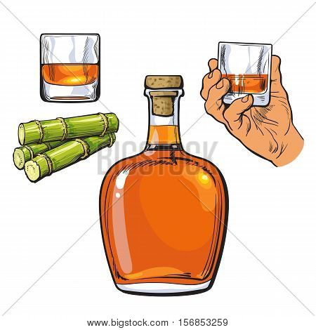 Jamaican rum bellied bottle, hand holding shot glass and sugar cane, sketch vector illustration isolated on white background. Realistic hand drawing of unlabeled rum bottle, shot glass and sugarcane