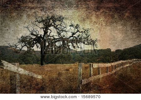 Oak tree and broken fence on a grunge background