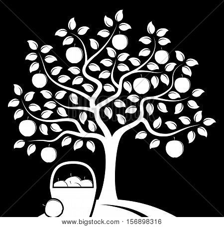 vector apple tree and basket of apples isolated on black background