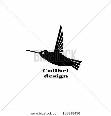 Colibri logo. Colibri logo design template. Vector illustration for your company.