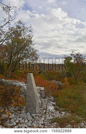 Autumn colours on display in the Carso karst limestone area of Friuli near Aurisina in north east Italy. This is part of a World War One walking trail as the area was then on the frontline.