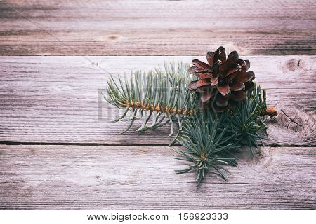 Pinecones on Rustic Wood Background. Christmas decoration
