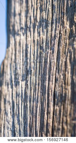 Abstract generated obsolete weathered wooden texture background