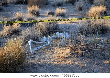 Dark, Gritty, Dirty, Horrific, Crime Scene. Skeleton partially buried in dirt in a desert. Forensic Crime Scene. Murder Scene. CSI Investigation.  Hard Shadows and harsh light adds to the effect