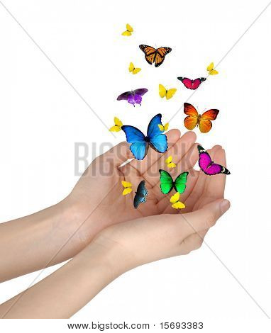 Hands releasing butterflies