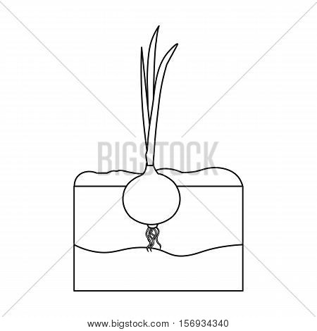 Onion icon in outline style isolated on white background. Plant symbol vector illustration.