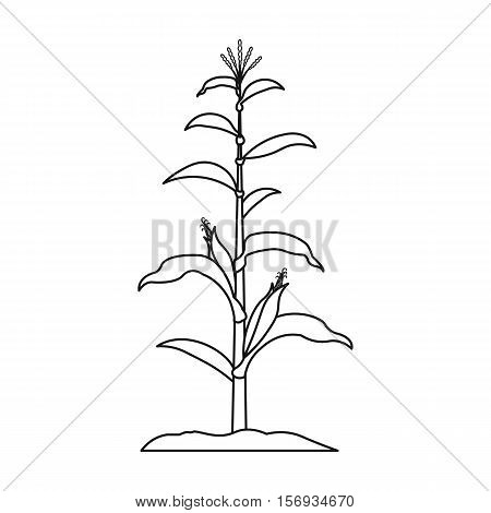 Corn icon in outline style isolated on white background. Plant symbol vector illustration.