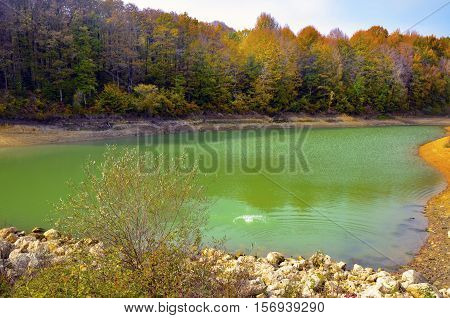 Autumnal scene with yellow pond and autumn trees. Fall trees reflected in lake. Autumnal scene with yellow orange and red leaves on trees.