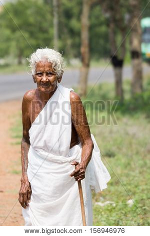 Dindigul India - October 24 2013: Old Hindu widows dress traditionally in plain white sari as their only garment and wear no jewelry. She walks along a rural road. Green foliage.