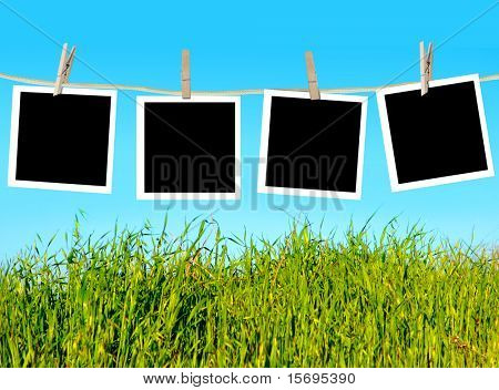 Blank photographs hanging on a clothesline against a blue sky and green grass