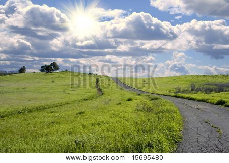 Beautiful vibrant green grassy hillside