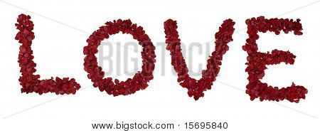 Red rose petals forming the word love - see portfolio for other letters