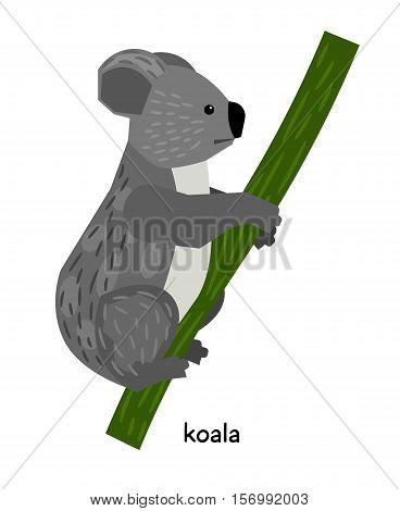 Nice Gray koala sitting in a tree
