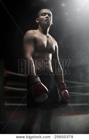 Portrait of attractive boxer in the dark