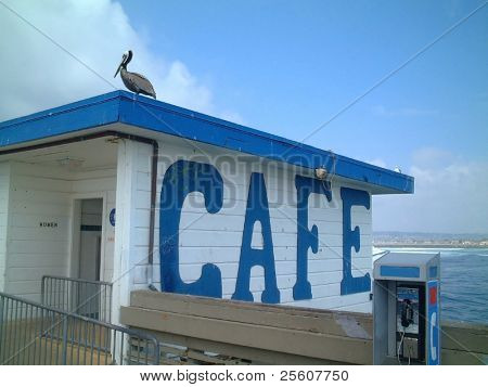 pelican sitting on cafe roof, san diego, united states of america