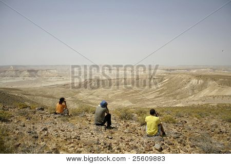 bird watchers  desert, israel