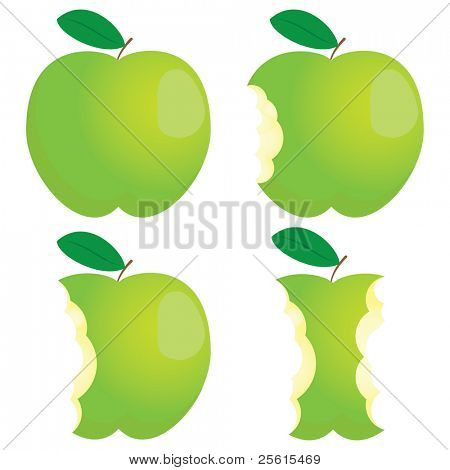 Green nibbled apple. Different states.