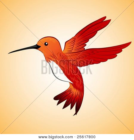 red hummingbird floating in the air
