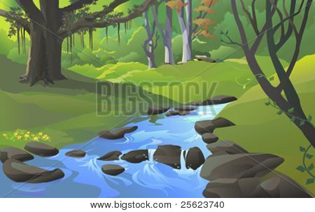 FRESH  WATER STREAM  IN FOREST