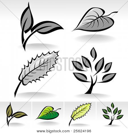 New ! LEAVES and PLANT collection