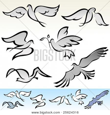 AMAZING  FLYING BIRDS  VECTOR  SET