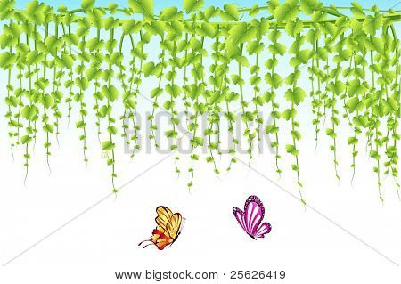 illustration of butterfly flying with hanging creeper background