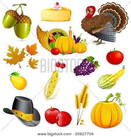 illustration of set of thanksgiving elements on white background