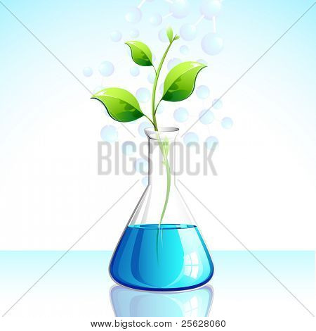 illustration of plant growing in laboratory apparatus