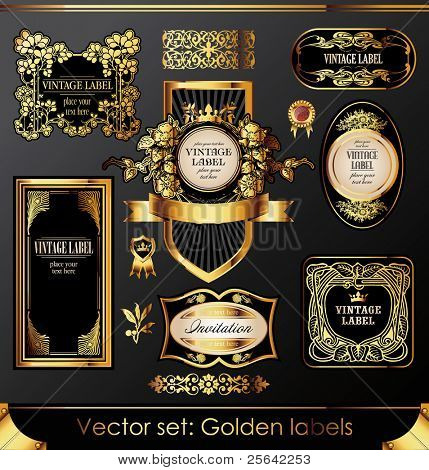 rótulos de ouro e o conjunto de elementos de design