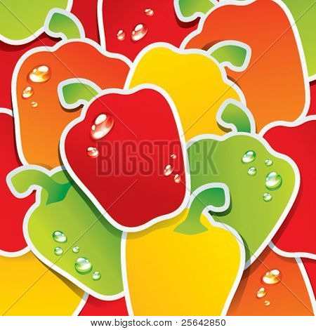 Background from multicolored paprika. Vector illustration.