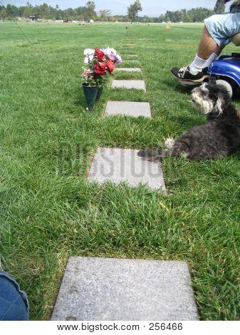 Duelo en el cementerio