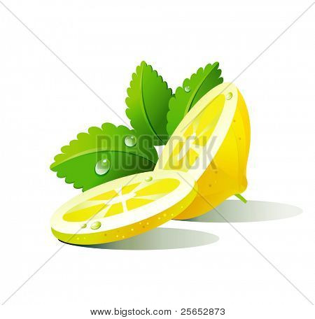 Vector lemon and mint on a white background.