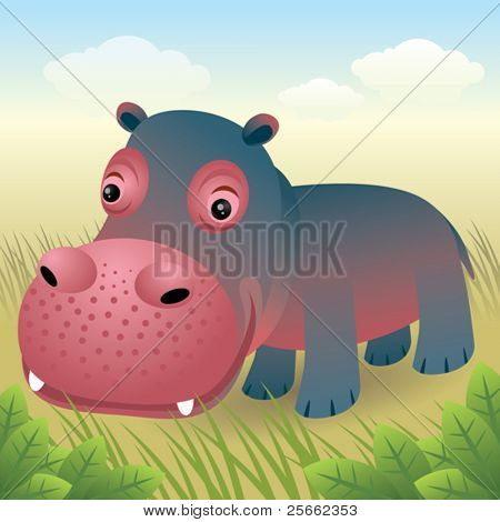 Baby Animal collection: Hippo