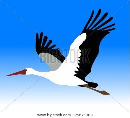 Vektor-Storch