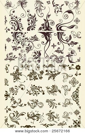 fashion ornament graphic vector set