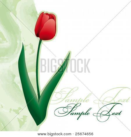 Card with tulip