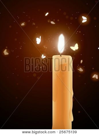 Moths near a candle