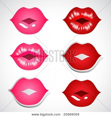 vector illustration or red ans pink kissing lips
