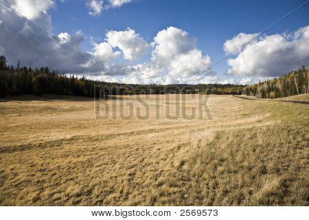 Pastureland (Ac)