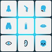 Physique Icons Colored Set With Skull, Nose, Oral Cavity And Other Smell Elements. Isolated  Illustr poster