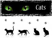 Постер, плакат: Черные кошки глаза и следы