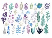 Big Set Of Flowers And Herbs. Vector Collection Leaf. Hand Drawn Vintage Floral Elements.perfect For poster